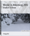 Winter in Altenberg 2012