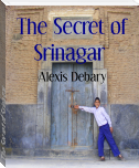 The Secret of Srinagar