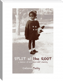 Split at the Root