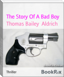 The Story Of A Bad Boy