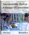 A Voyage Of Consolation