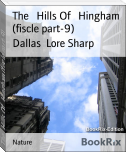 The   Hills Of   Hingham (fiscle part-9)