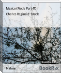 Mexico (Fiscle Part-11)