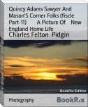 Quincy Adams Sawyer And Mason'S Corner Folks (fiscle Part-11)        A Picture Of    New England Home Life