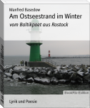 Am Ostseestrand im Winter