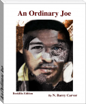 An Ordinary Joe