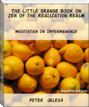 The Little Orange Book on Zen of the Realization Realm