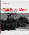 Two Paths Meet