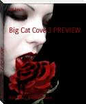Big Cat Cove 3 PREVIEW