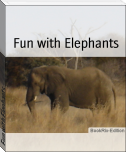 Fun with Elephants