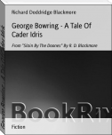 George Bowring - A Tale Of Cader Idris