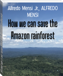How we can save the Amazon rainforest
