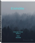 Chicago Krimi Band 1: Eishölle