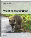 Vacation Wonderland