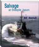 Salvage at Steeple Jason