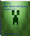 Epic Minecraft Quest