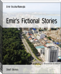 Emir's Fictional Stories