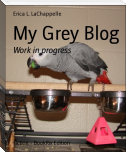 My Grey Blog