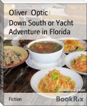Down South or Yacht Adventure in Florida