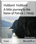 A little journey to the home of Patrick J. Healy