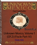 Unknown Mexico, Volume 1 (Of 2) (Fiscle Part-Vi)