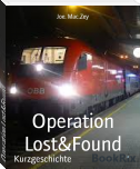 Operation Lost&Found
