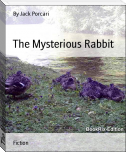 The Mysterious Rabbit