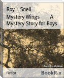 Mystery Wings        A Mystery Story for Boys