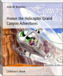 Homer the Helicopter Grand Canyon Adventures
