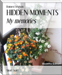 HIDDEN MOMENTS