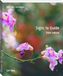 Signs to Guide