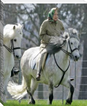 Her Majesty Queen Elizabeth II Love And Her Passion For Horses.