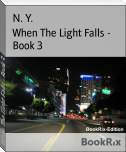 When The Light Falls - Book 3