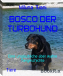 BOSCO DER TURBOHUND