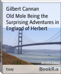 Old Mole Being the Surprising Adventures in England of Herbert