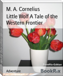 Little Wolf A Tale of the Western Frontier