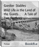 Wild Life in the Land of the Giants        A Tale of Two Brothers