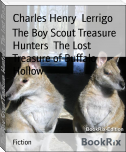 The Boy Scout Treasure Hunters  The Lost Treasure of Buffalo Hollow