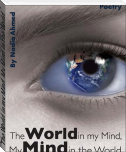 The World in my Mind, My Mind in the World...
