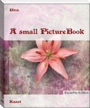 A small PictureBook