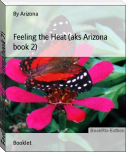 Feeling the Heat (aks Arizona book 2)