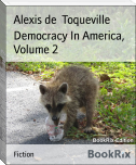 Democracy In America, Volume 2