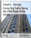 Funny Big Socks Being the Fifth Book of the Series