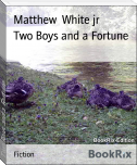 Two Boys and a Fortune