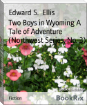 Two Boys in Wyoming A Tale of Adventure (Northwest Series, No. 3)