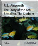 The Story of the 6th Battalion, The Durham Light Infantry France, April 1915-November 1918