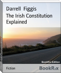 The Irish Constitution Explained