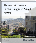 In the Sargasso Sea A Novel