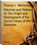 Patrician and Plebeian Or The Origin and Development of the Social Classes of the Old Dominion