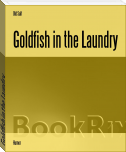 Goldfish in the Laundry
